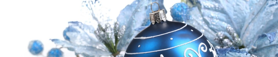 cropped-blue-christmas-1.jpg
